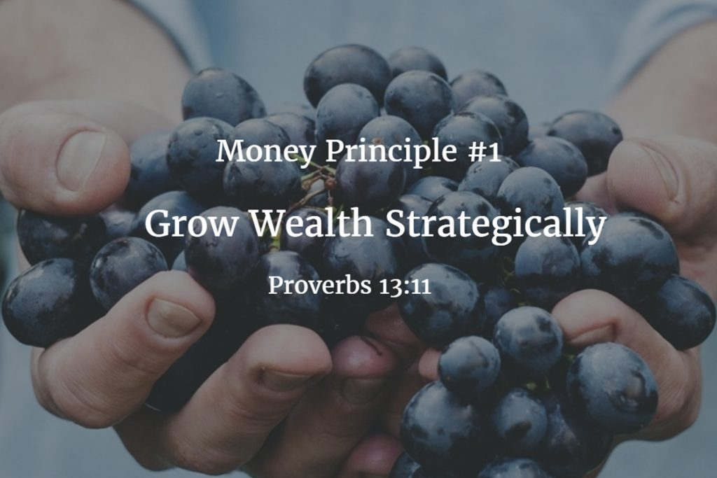 Money principle #1: Grow Wealth Strategically